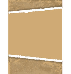 Torn brown paper vector