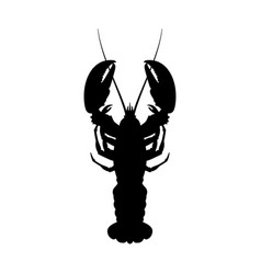 black silhouette of lobster top view vector image