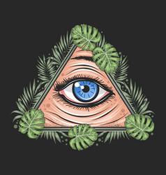 eyes tropical leaf triangle illuminati freemason g vector image