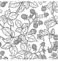 Raspberry seamless pattern vector