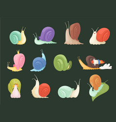 snails characters cartoon insects with spiral vector image
