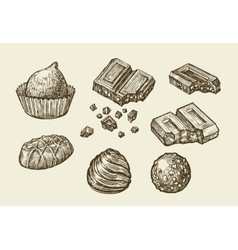 Chocolates Hand drawn sketch sweets caramel vector image