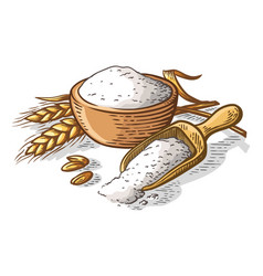 Colorful fresh flour wooden dish scoop on white vector