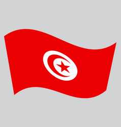 Flag of tunisia waving on gray background vector
