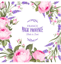 frame rose and lavender flowers on a white vector image