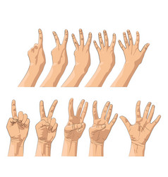 Hands gestures count one two three four five vector