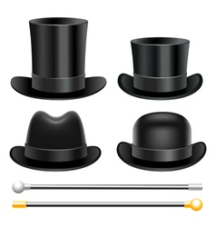 Hats and walking sticks vector image