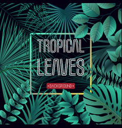 tropical leaves background with jungle plants vector image