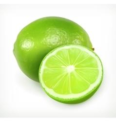 Lime citrus fruit icon vector image