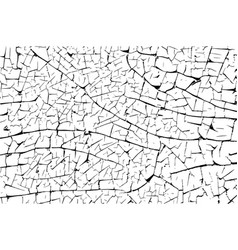 cracked peel off pattern vector image