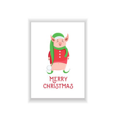 cute piglet in elf costume isolated on white vector image