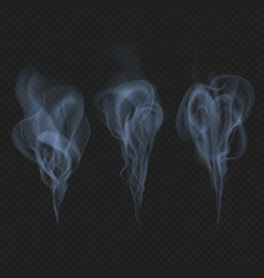 Delicate realistic smoke fog or mist waves vector