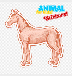farm animal horse in sketch style on colorful vector image vector image