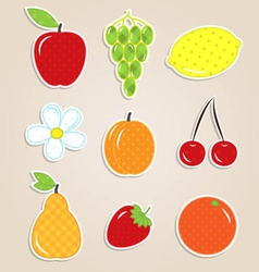 Fruits stickers vector