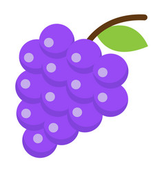 Grapes flat icon fruit and vitamin vector