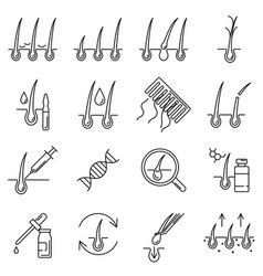 hair loss problem and ways treatment line icon vector image