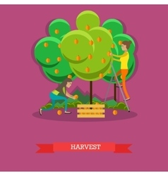 Harvesting concept in flat vector