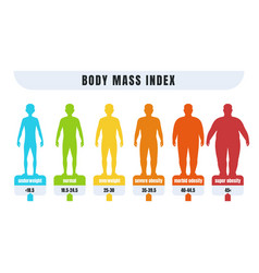 Man bmi body mass index infographics for male vector