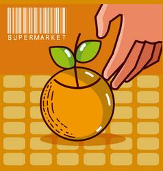 Sweet orange super market products vector