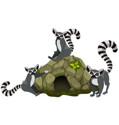 Three lemurs in the cave vector