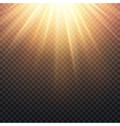 Realistic transparent yellow sun rays warm orange vector image