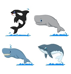 whale cartoon collection for you design vector image vector image