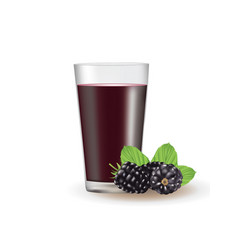 Blackberry juice vector
