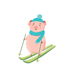 piglet in hat and scarf skiing isolated on white vector image