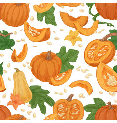 seamless fall pattern with pumpkins squashes vector image