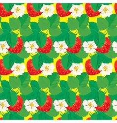strawberry seamless 3 380 vector image vector image