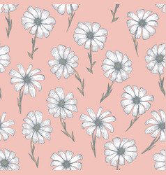 tender coral pattern with white chamomile flowers vector image