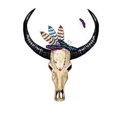 Bull Skull Butterflies vector image vector image