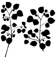 Branch Silhouettes vector image vector image