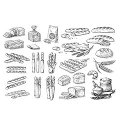 Collection natural elements bread and flour vector