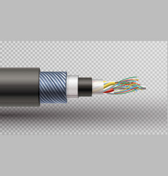 rector realistic of fiber optic tigh vector image
