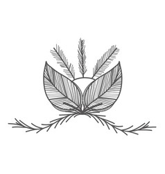 Rustic feathers with leaves and branches vector