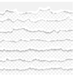set of torn paper stripes paper texture with vector image