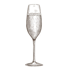 glass of champagne hand drawn sketch vector image vector image
