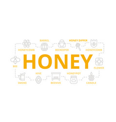 honey thin line banner for design concept vector image vector image