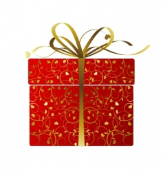 Stylized gift box vector image