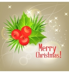 background with Christmas holly vector image