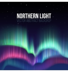 Winter sky with polar lights background vector image