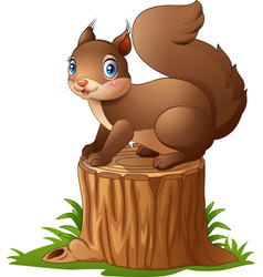 cute squirrel cartoon standing on tree stump vector image