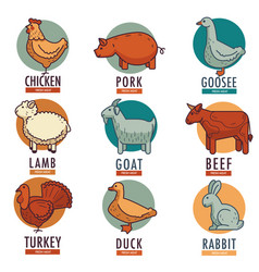 Meat and poultry flat animal and birds vector