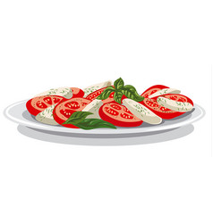 Salad with mozzarella vector