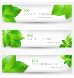 Set banner ecology colorful vector image