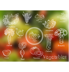 Set of hand-drawn vegetables vector