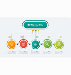 presentation infographic template 5 options vector image vector image