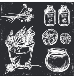 Ayurveda Hand drawn Set vector