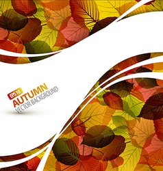 Colorful autumn background vector